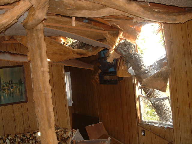 The damage in the interior.