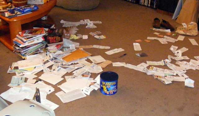 File cat...files.