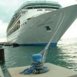 Took a Cruise